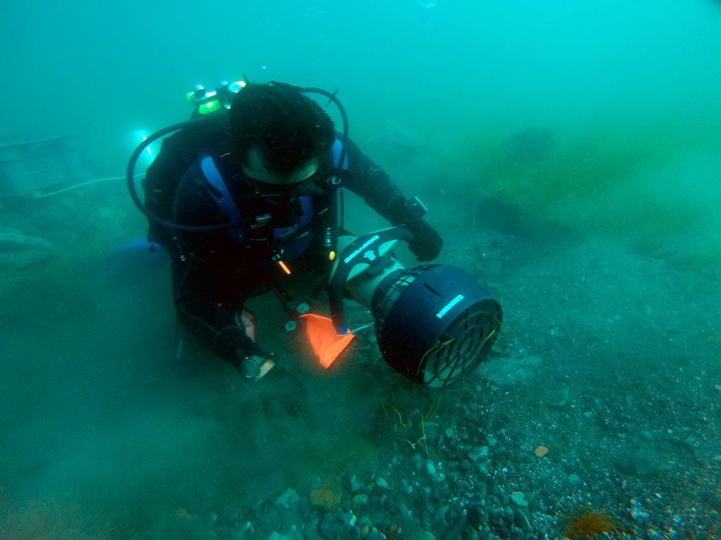 Underwater and archaeological mission in the waters of the Crimean Peninsula